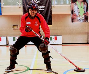 Hockey sobre Duela